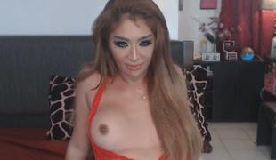 Hottie Transsexual Plays Her Long Cock